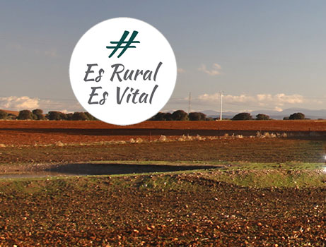 Rural Vital img